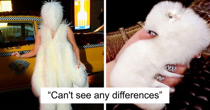 Person Compares Lady Gaga's Looks To iPhone Cases And It Looks Like He's Onto Something