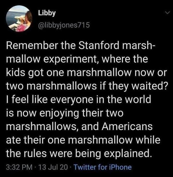 marshmallow-5f2b4570eddfd.jpg