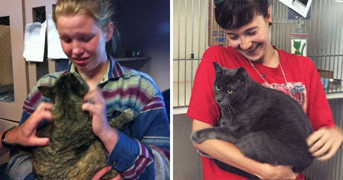 26 Stories Of Owners Finding Missing Cats Years After They Disappeared
