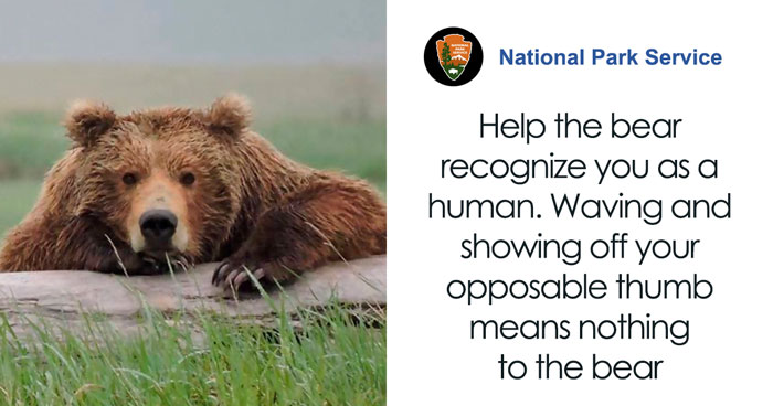 National Park Service Warns Against Sacrificing Slower Friends In A Bear Attack In This Hilarious PSA
