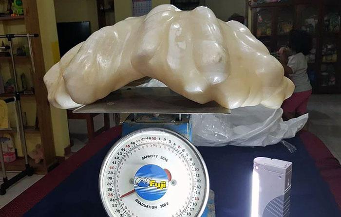 Perla gigante que vale 100$ millones