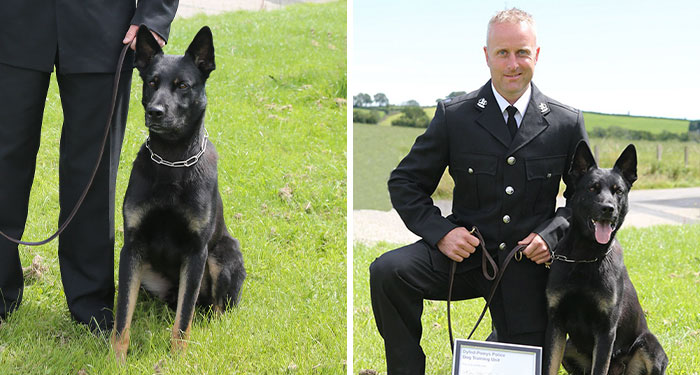 Police Dog Finds Missing Mother And Baby On His First Day At Work