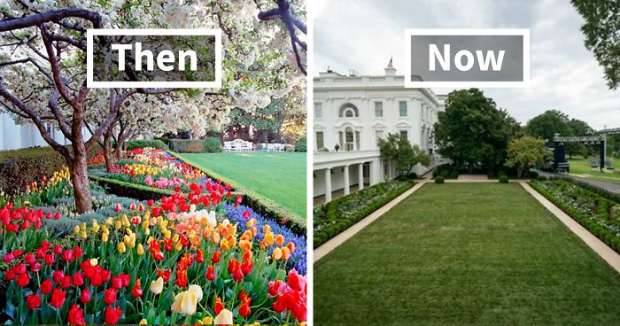People Are Ridiculing Melania Trump S White House Rose Garden Renovation With Savage Tweets Bored Panda