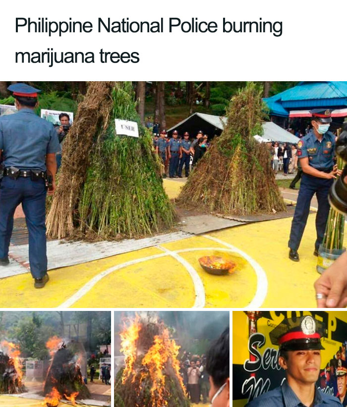 What Could Go Wrong If You Burn 3.3 Tons Of Weed In A Residential Area