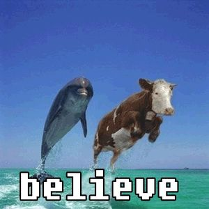 you-just-have-to-believe_fb_448326-5f3d52146e31d.jpg