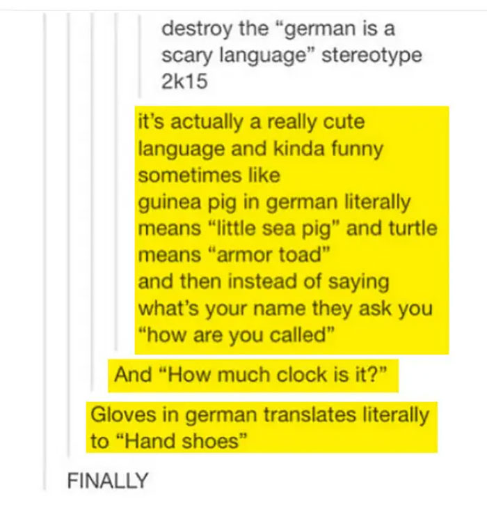 When German Language Wasn't Scary But Cute As F**k