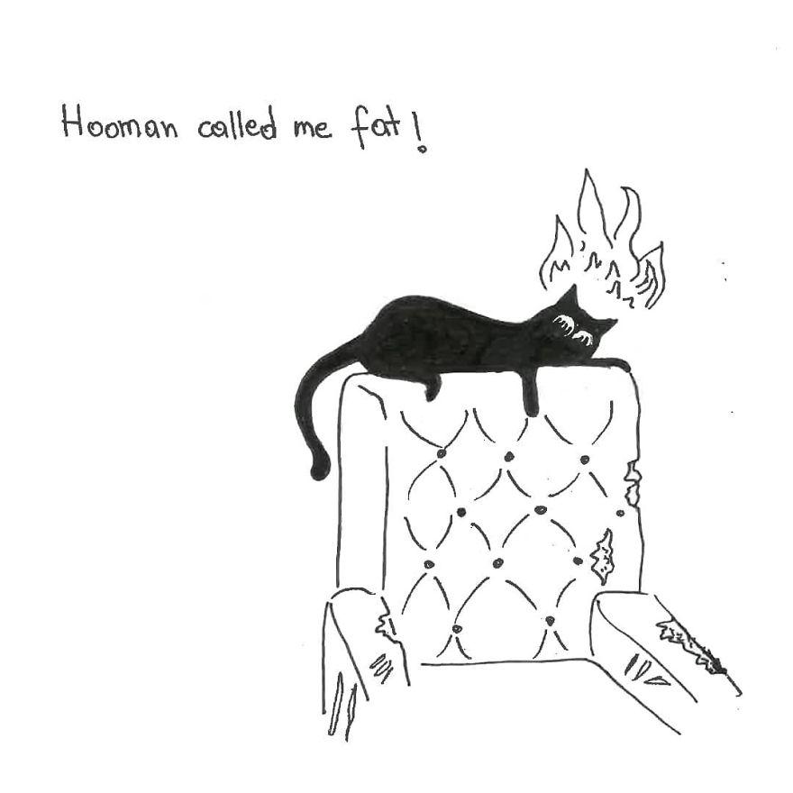 Owner Illustrates The Boring Days His Cat Lived In Quarantine In Fun Comics