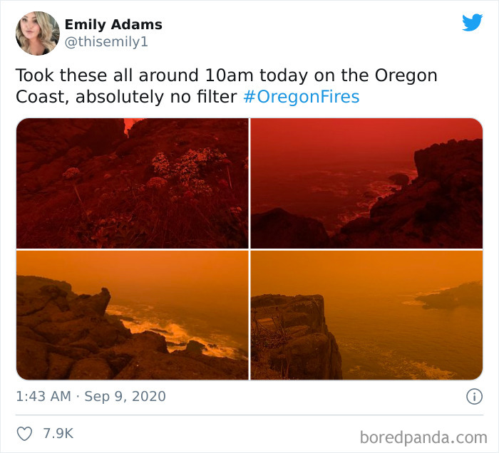 West-Coast-Oregon-California-Washington-Wildfires-Apocalypse