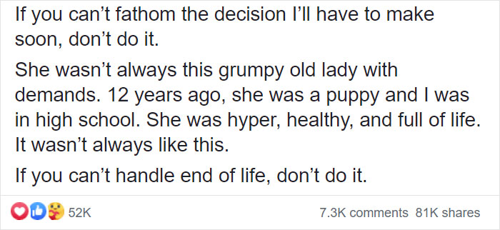 """""""Before You Get A Puppy, Imagine Yourself 10+ Years From Now"""": Woman's Brutally Honest Post About Getting A Dog Goes Viral"""