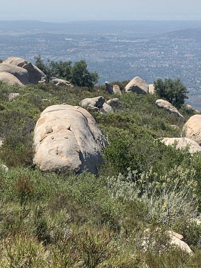 Esta roca que parece un hipopótamo