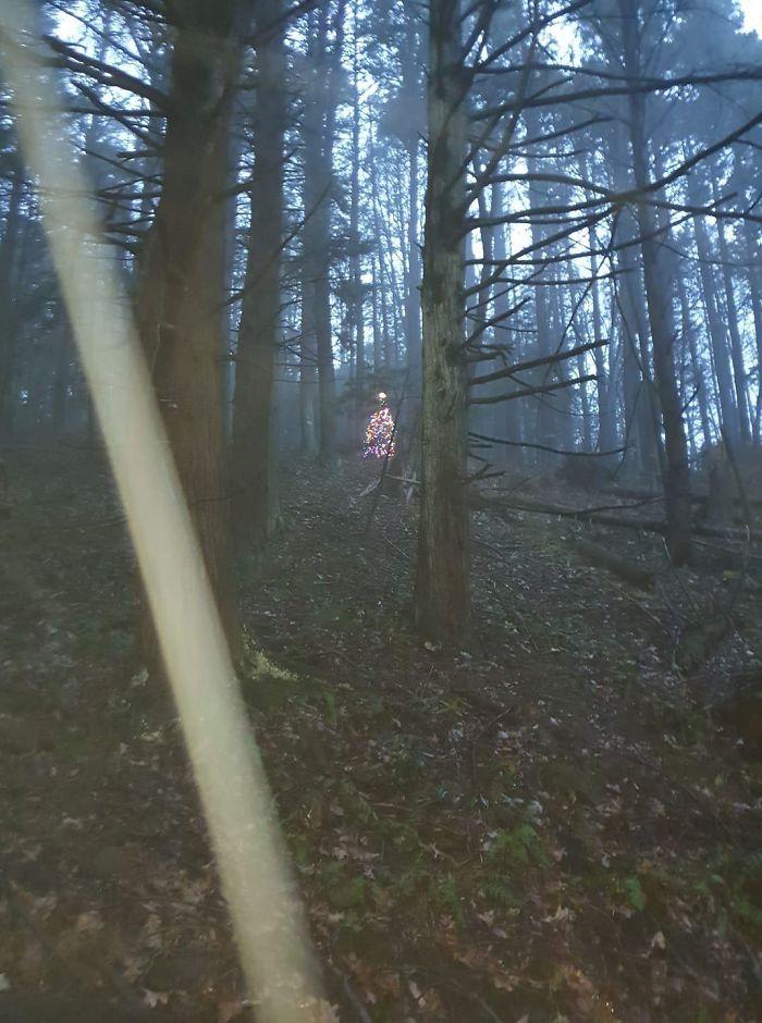 Árbol de Navidad terrorífico en mitad del bosque. Funciona con minipaneles solares