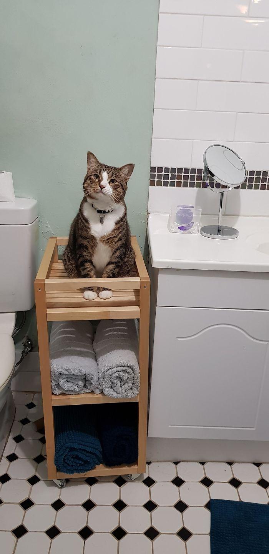 Supervisor de duchas