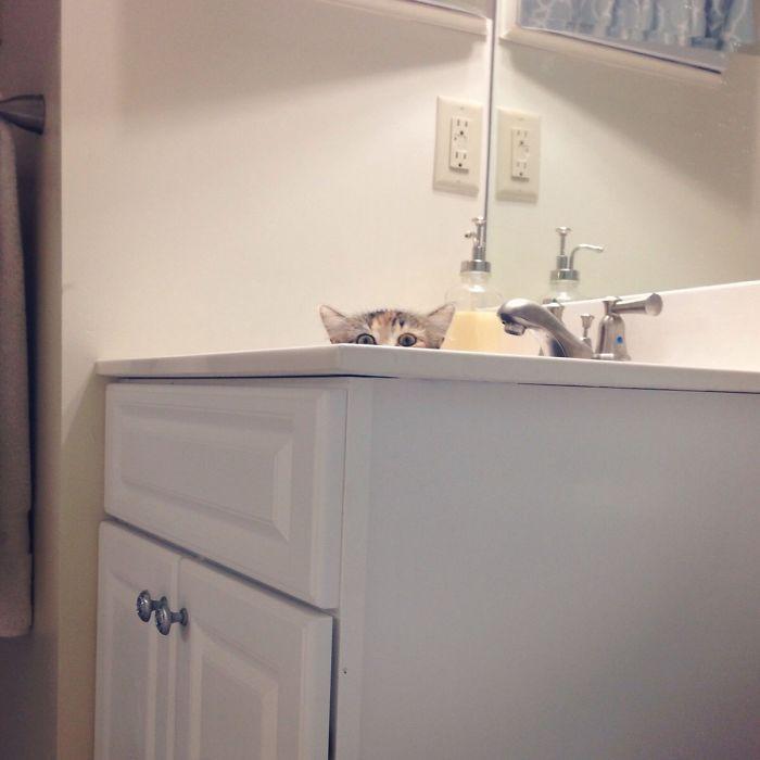 Espiándome en la ducha