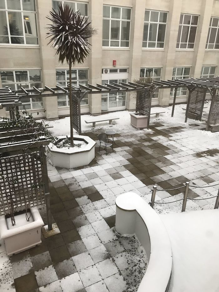 The Way The Snow Melted In My University's Courtyard Makes The Floor Look Like A Video Game