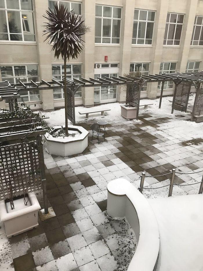 Patio de la universidad, la nieve se ha derretido de tal forma que parece un videojuego