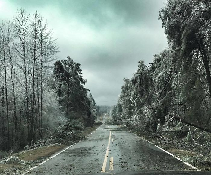 Ice Storm Makes North Georgia Look Like Something Out Of An Apocalypse Movie