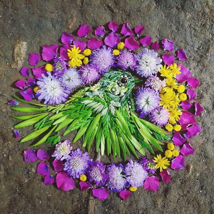 Plant-Flower-Birds-Hannah-Bullen-Ryner