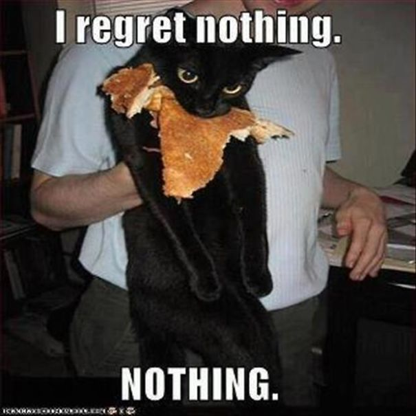 I-regret-nothing-cat-eating-pancakes-5f5146ca9ff1a.jpg