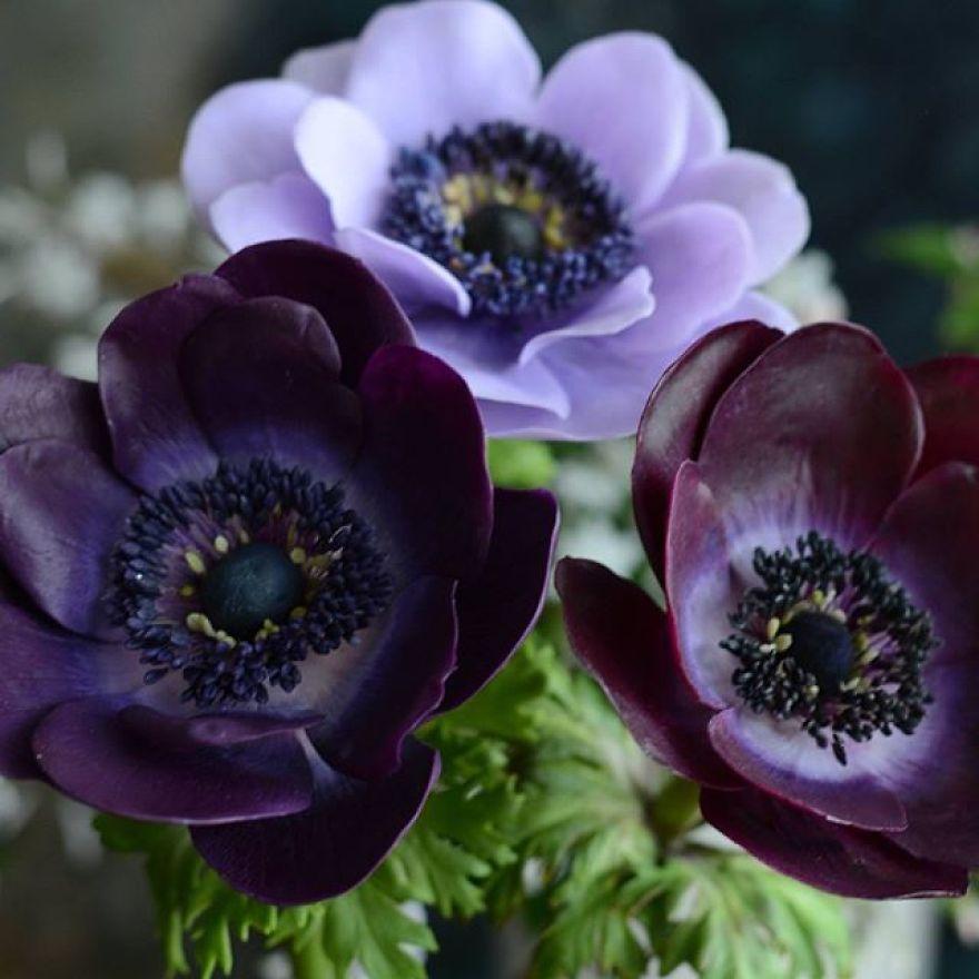 This Artist Creates Amazing Realistic Porcelain Flowers