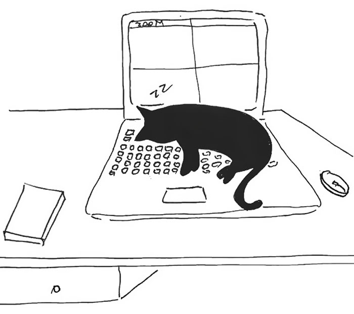 Artist Created These 33 Comics To Show His Cat's Life In Quarantine