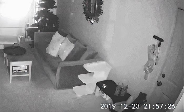 """Esta dueña puso una cámara para vigilar a su gato, y obtuvo """"pruebas conmovedoras"""" de lo mucho que el gato la echa de menos"""
