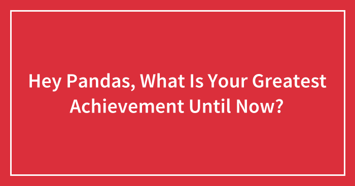 Hey Pandas, What Is Your Greatest Achievement Until Now? (Ended)