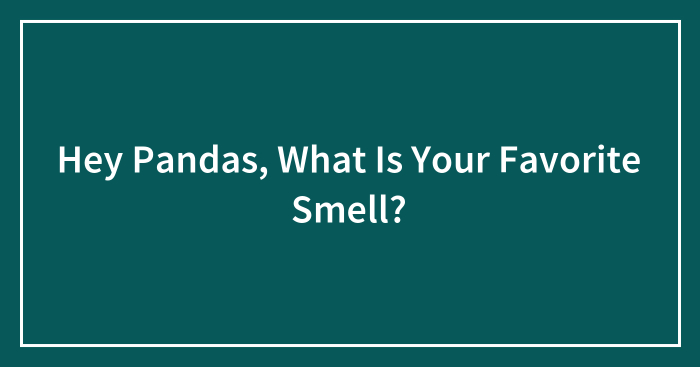 Hey Pandas, What Is Your Favorite Smell? (Closed)