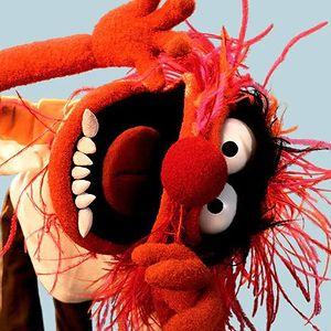 Red rockin lobster