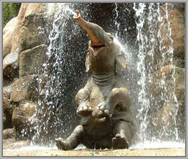 elephant-waterfall-5f62921b48b76.jpg