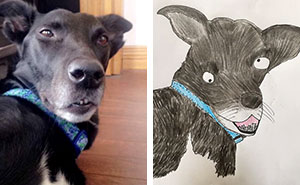 I Draw Crappy Pet Portraits And All Profits Go To My Local Homelessness Charity (51 Pics)