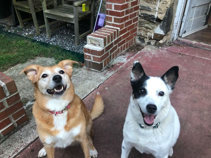 This Is Starr With Her Sister Shelby, They're Both 7 Years Old