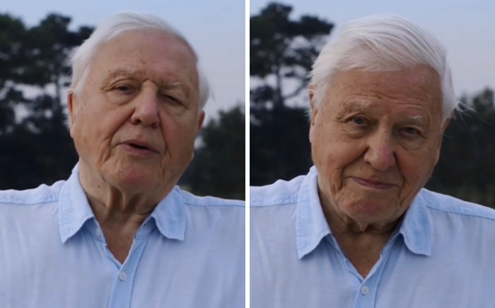 94-Year-Old Sir David Attenborough Officially Joins Instagram And His Follower Count Is Growing Insanely Fast