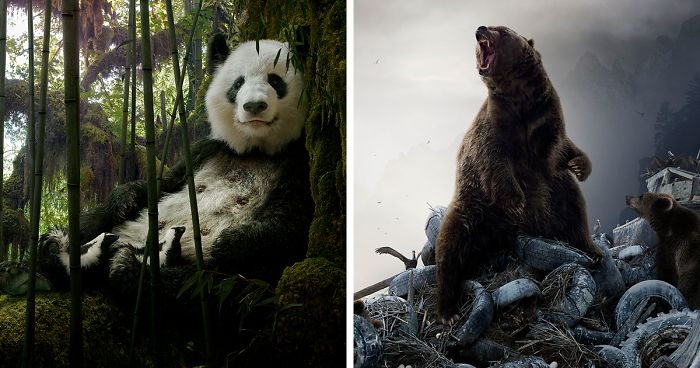 37 Surreal And Magical Animal Images By Simen Johan