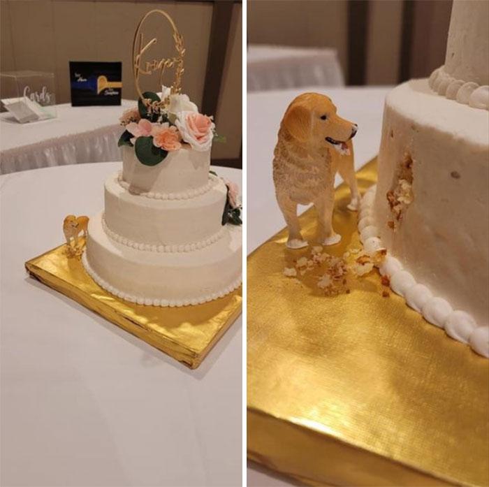 Tarta de boda muy acertada para dueños de perro