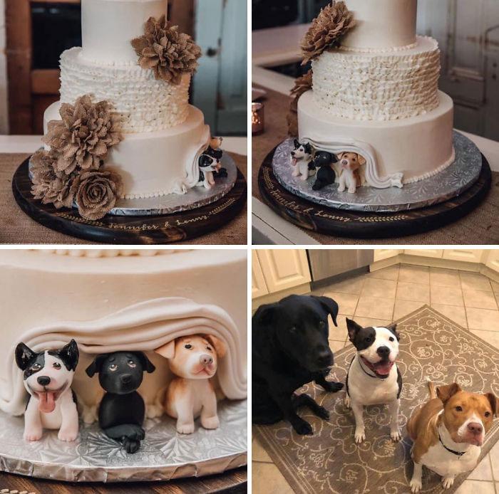 Para amantes de los perros