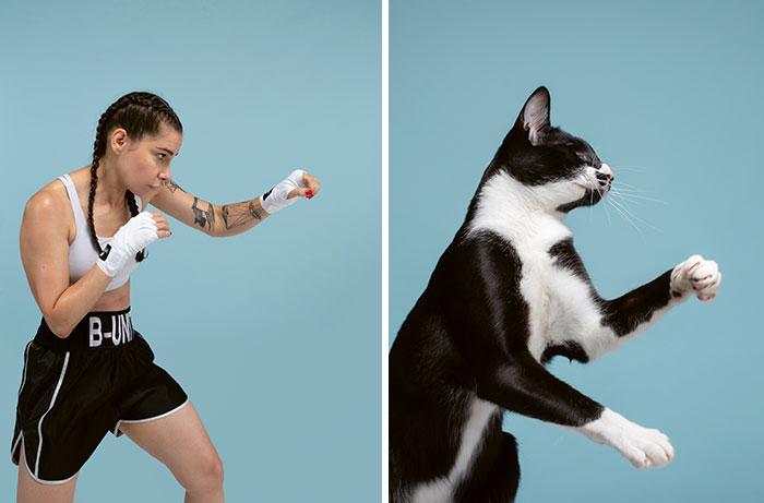 Сходство между кошками и людьми