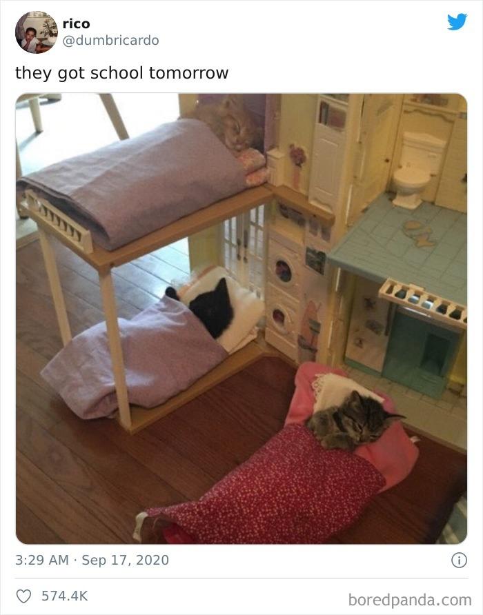 They Got School Tomorrow