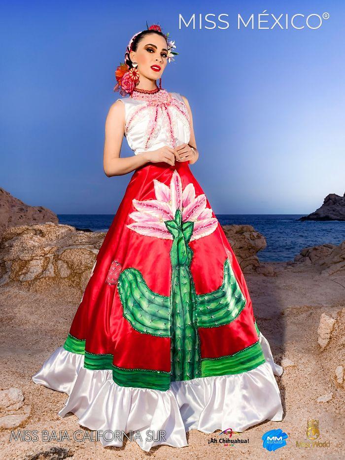 Miss Baja California Sur, Diana Ramírez