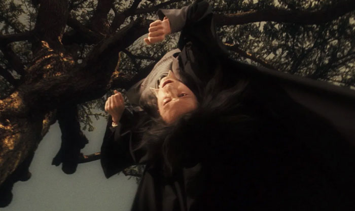 """Snape Actually Called Lily Potter A """"Mudblood"""" During Snape's Worst Memory"""