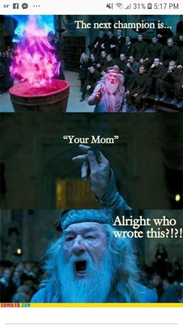 Best Harry Potter Meme I Could Find....