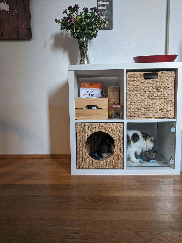 Kallax Puppy-Proof Cat Feeding Station Station; Food And Treat Storage Above.