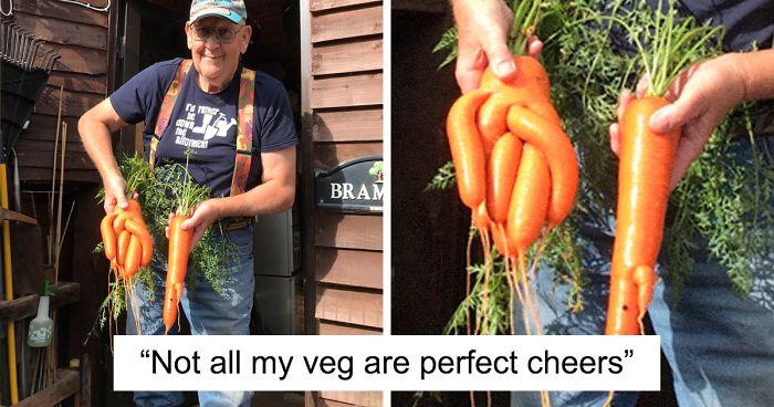 71-Year-Old Veggie King Posts Gardening Pics, Becomes An Internet Sensation (30 Pics)