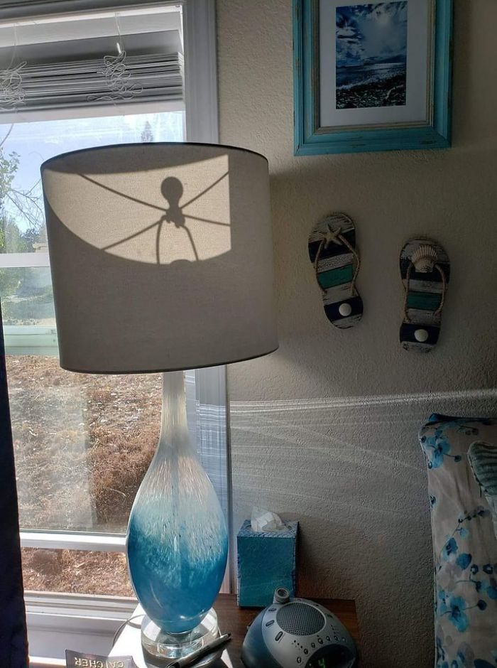 Después de mi decimoséptimo ataque al corazón, me di cuenta de que necesito mover mi lámpara