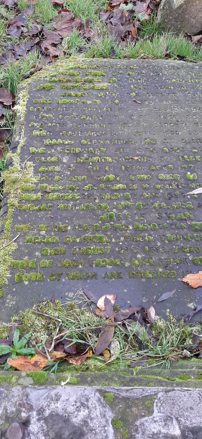 Quasi-Legible Moss Growing In The Letters Of This Fallen Tombstone