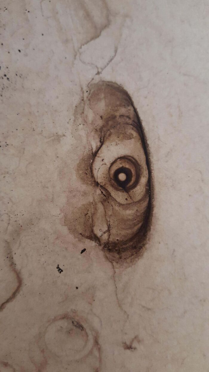 Coffee Stain Looks Like It's Staring At You