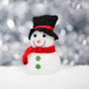 Anonymous Snowman