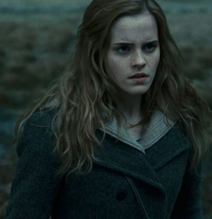 Hermione Founded The Society For The Promotion Of Elfish Welfare
