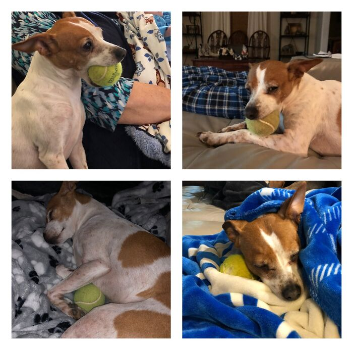 Minnie Pearl And Her Ball.... My Sweet Little Girl Always Has Her Favorite Tennis Ball With Her. Recently She Has Been Bringing To Show Her New Baby Brother.