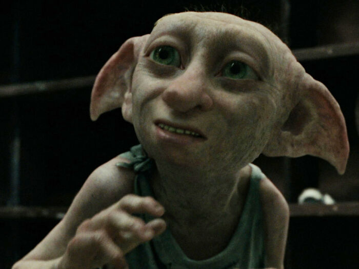 House Elves Were Combatants In The Battle Of Hogwarts And Fought Against The Death Eaters