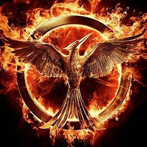 Idk Katniss Potter